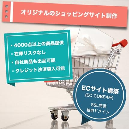ショッピングサイト構築 (基本商品4000点以上・クレジット決済導入サポート可)