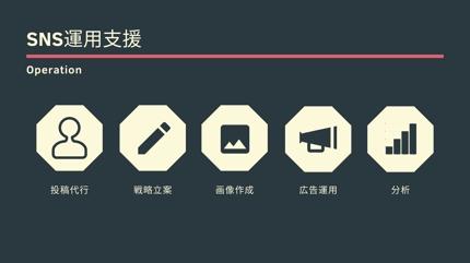 SNS運用支援・コンサル(Twitter/Instagram)