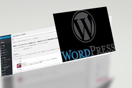 WordPressやJoomla!のエラー修正やカスタマイズ(軽作業)