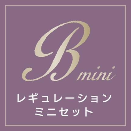 Bコース/ロゴレギュレーション・ミニ