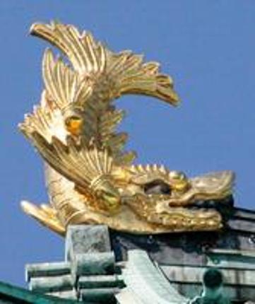 名古屋市、愛知県での現地調査、現地作業
