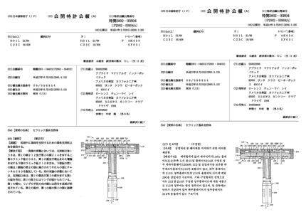 特許文献翻訳