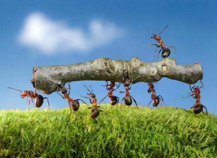 新規顧客開拓:営業プロモーション戦略の相談乗ります
