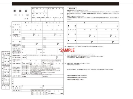 Japanese Application form