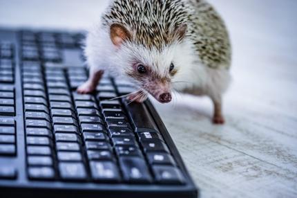 Excel効率化ツールの作成