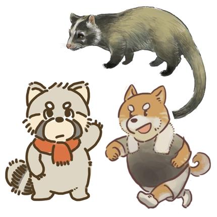 動物のイラスト、リアルからポップまで幅広いタッチで描きます。