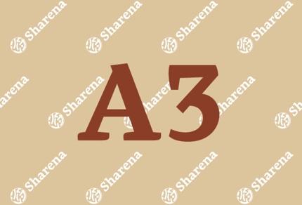 【A3】チラシデザイン