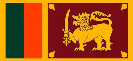 スリランカへの事業進出の相談をお受けします