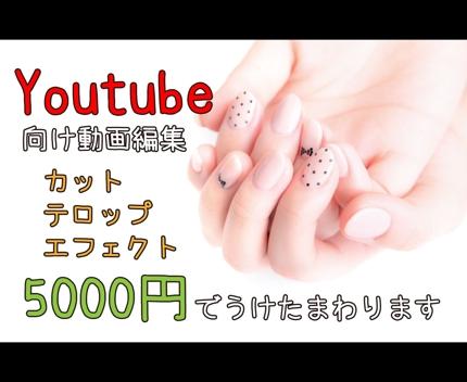 Youtube向け動画編集(カット・テロップ・エフェクト挿入)いたします