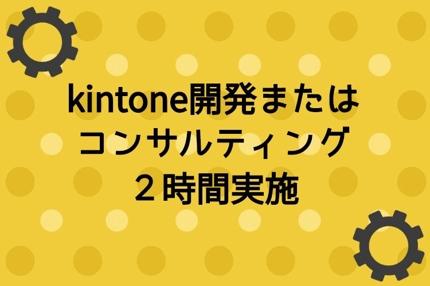kintone開発またはコンサルティング2時間実施
