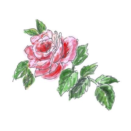 優しい雰囲気の手描きの花や植物、動物のイラスト・挿絵を作成します