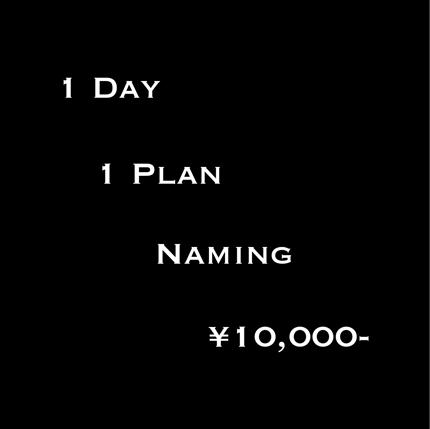 1日1案10000円ネーミング相談