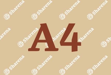【A4】チラシデザイン
