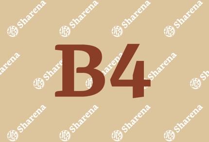 【B4】チラシデザイン