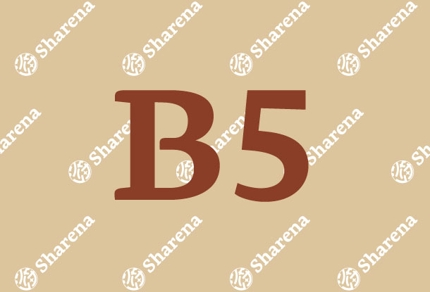 【B5】チラシデザイン