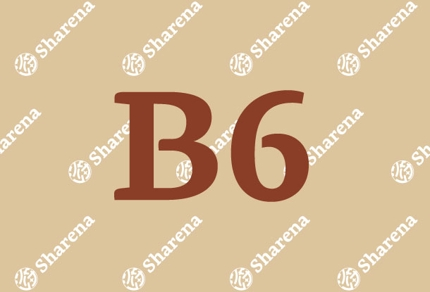 【B6】チラシデザイン