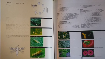 病害虫に対応した生物農薬の選定と使用方法についての知識と経験をお伝えします。