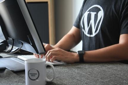 Wordpressの投稿・編集の自動化方法教えます 手間と不安の問題を解消します