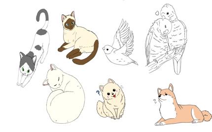 少しリアルなデフォルメ動物のイラスト制作します!