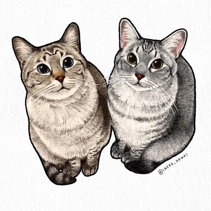愛猫のイラスト描きます(半身〜全身)