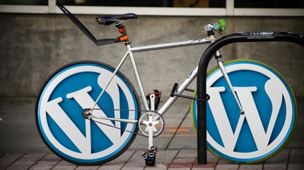 【WordPress】不具合対応/カスタマイズ/AMP対応/キャッシュ対応/他