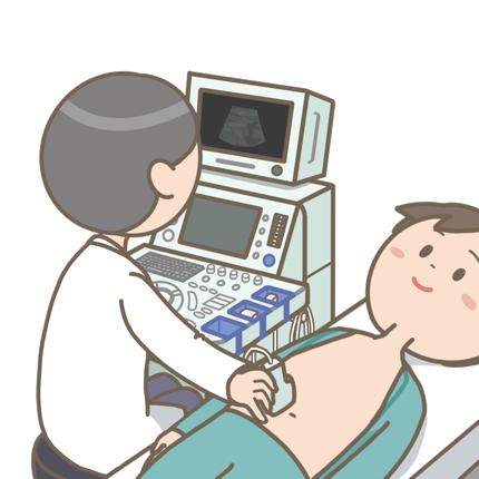 超音波検査報告書(腹部、心臓、頸動脈等)