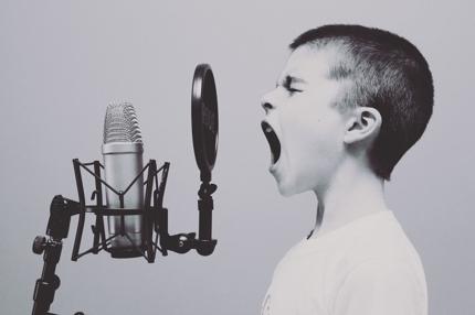 歌ってみたからオリジナルまで!ボーカルをキレイにミックス!