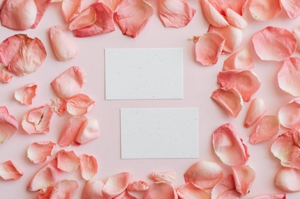 両面/印刷代込◎ 想いの詰まった名刺・ショップカードをお作りいたします