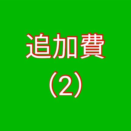 追加費【2】