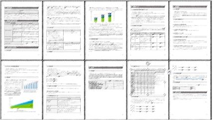 【採択済案件】事業再構築補助金の事業計画書テンプレート【最安価】