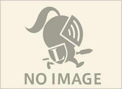 チラシA4片面4C
