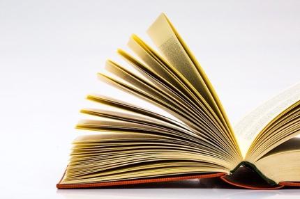 本に関する原稿書きます「紹介」「感想」「概要レポート」
