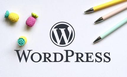 WordPressブログの作成を代行いたします。(テーマ使用)