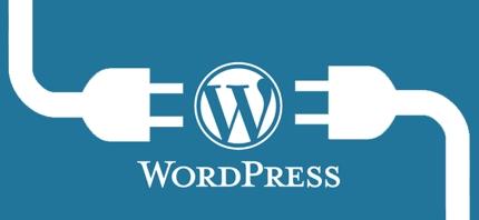期間限定! wordpress 初歩の使い方 固定ページ追加やプラグイン追加等 教えます。