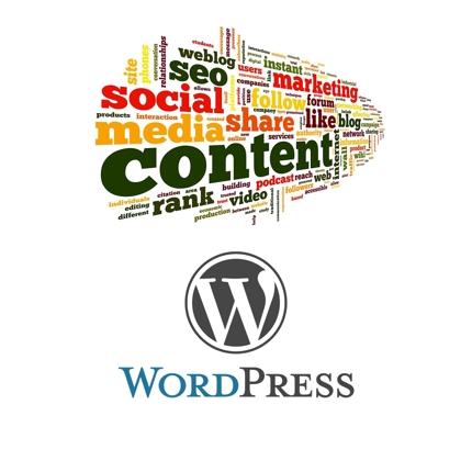 [SEO対策、スマホ対応済み]コンテンツマーケティング専用Wordpressブログ作成