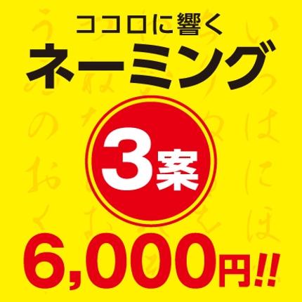 ネーミング3案6,000円!ランサーズ手数料込