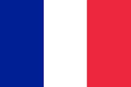 フランス語翻訳(日→仏・仏→日)