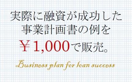 実際に融資が成功した事業計画書の見本例 日本政策金融公庫から創業融資250万円