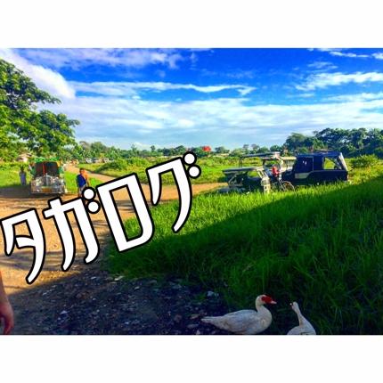 タガログ語(フィリピン語)通訳同行します!《観光》