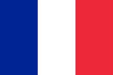 パリ+パリ近郊+フランス地方 観光案内+通訳