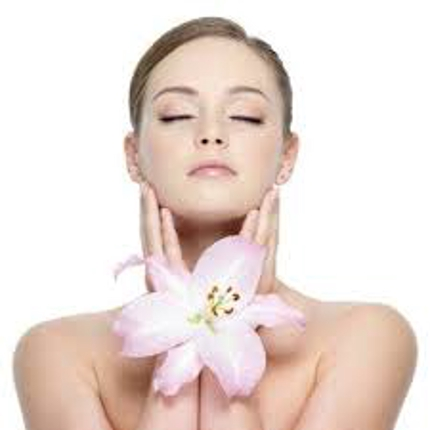 記事【特典付き】美容・健康記事200記事提供します 美容・ダイエット系記事200記事書