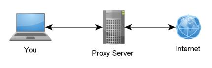 Proxyサーバ不要のProxyソフトウェア案内