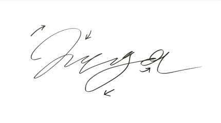 [4K納品]あなたのサインのアニメーション作ります Make an animation of your sign