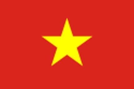 ベトナム語翻訳