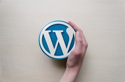 参考サイトと簡単なヒアリングでWPテーマ制作!/デザイン