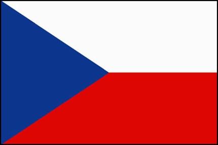 チェコ語⇔日本語、ロシア語⇔日本語 翻訳します