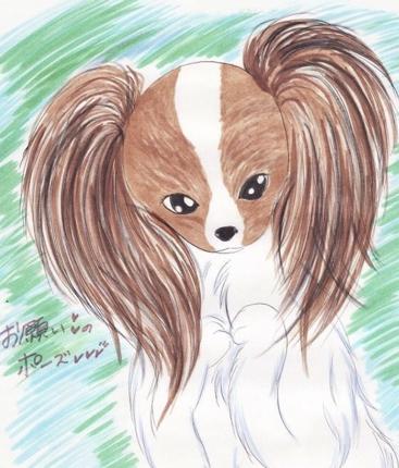 ペット、動物のイラスト描きます