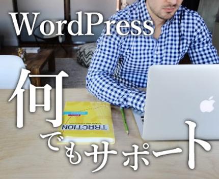 WordPressのカスタマイズ・不具合・アクセス数等の悩みをサポートします