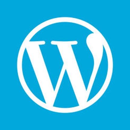 【最短30分】Wordpressのサーバー移設/ドメイン変更をお手伝いします