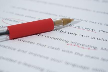 日英ネイティブが英語文のチェックを承ります